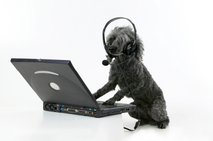 dog_with_headset